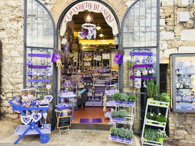 Cửa hàng hoa Lavender ở Assisi