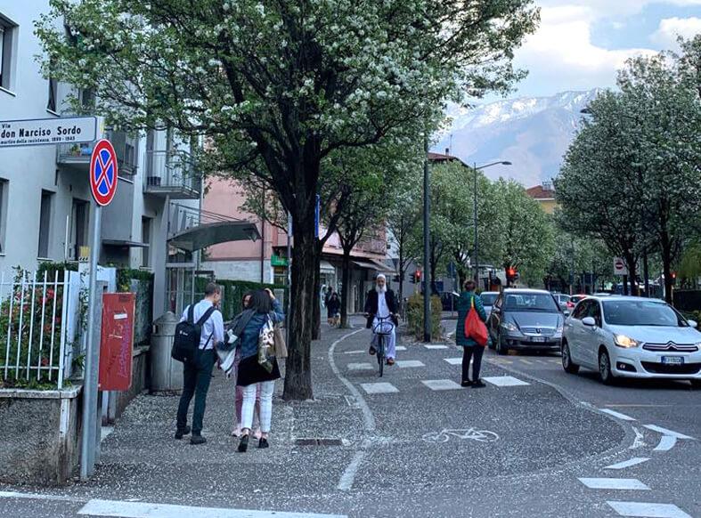 Trento Học ở Đại học Trento